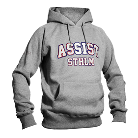 ASSIST STHLM PULLOVER GREY L